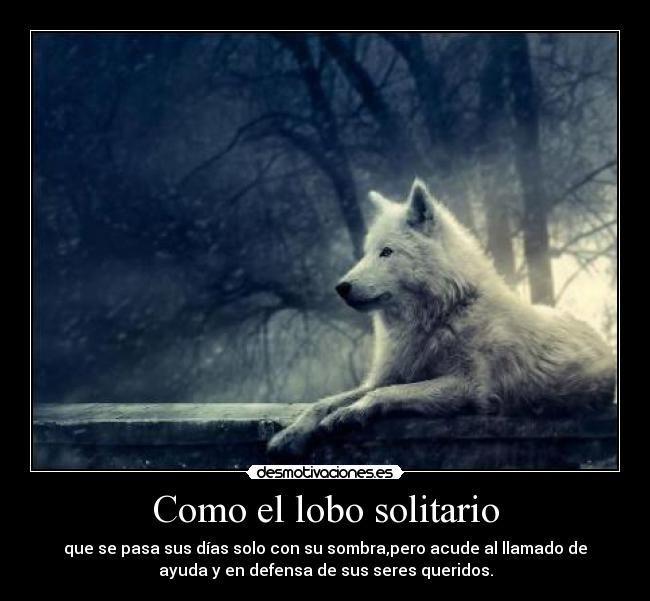 Como el lobo solitario que se pasa sus días solo con su sombra, pero acude al llamado de ayuda y en defensa de sus seres queridos...