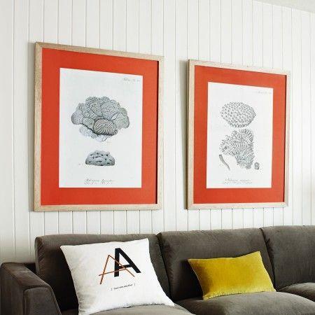 GRAHAM & GREEN - Coral Framed Prints orange