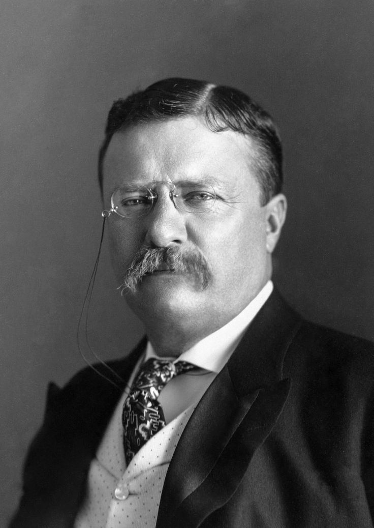 Theodore Roosevelt - Wikipedia