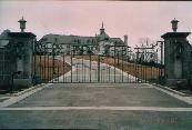 ornamental aluminum driveway gate