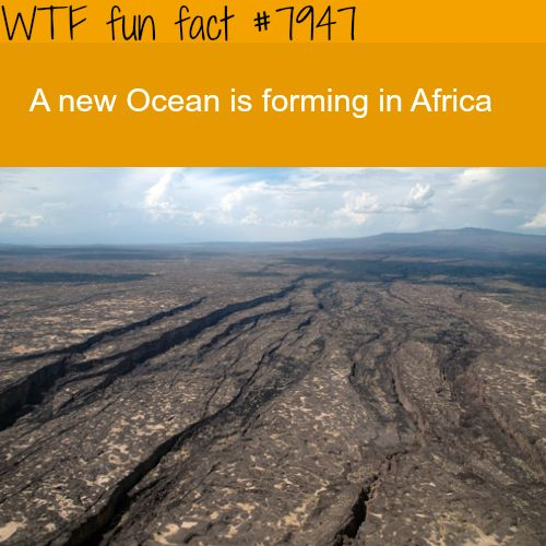 Geologists working in ... Ethiopia say ... it will take about 10 million years. http://www.bbc.com/news/10415877