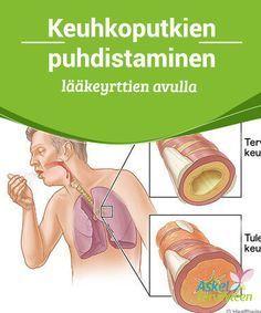 Keuhkoputkien puhdistaminen lääkeyrttien avulla Tässä artikkelissa selitämme, kuinka pystyt #vahvistamaan #keuhkoputkiasi #luonnollisesti lääkinnällisten yrttien avulla. #Luontaishoidot