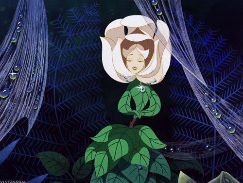 Alice in Wonderland (1951)                                                                                           More