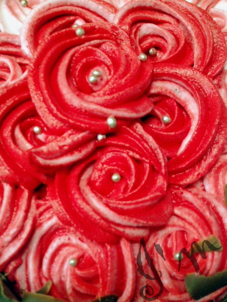 rosette ROSES - by I'm - Ashwathi and Michelle