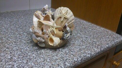 Decoração da conchas
