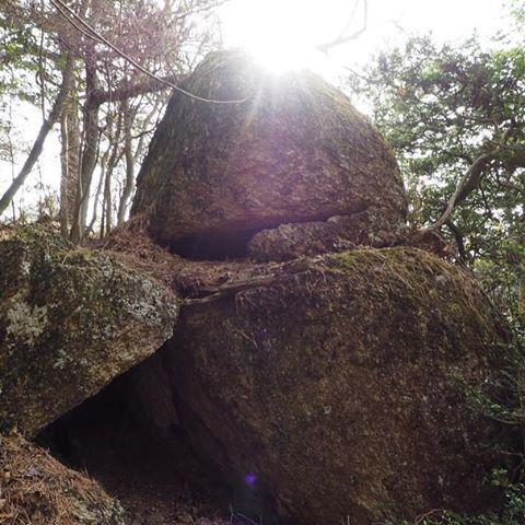 【naohikotokuhira】さんのInstagramをピンしています。 《マムシ谷東側尾根で発見した磐座。長峰山から烏帽子岩に至るレイライン上にある。 #landscape #photography  #photo  #photographer  #風景 #ファインダー越しの私の世界  #写真  #OLYMPUS #オリンパス #japanese #japan #landscape  #color  #kobe #神戸  #forest #森 #六甲山  #遺跡 #mtrokko #巨石 #山  #磐座 #mountain #trav3lr  #theworldguru #travel  #trip》
