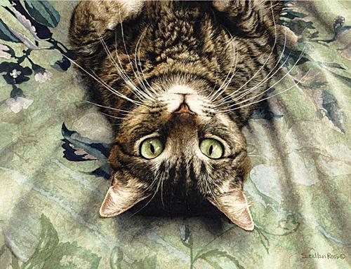 Kitty - SueEllen Ross paintings...Peculiar Perspective: Cat Art, Peculiar Perspective, Contemporary Artists, Tabby Cat, Fiddler Elbow, Entrance Doors, Sueellenross, Sueellen Ross, Suellen Ross