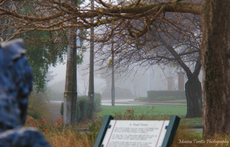 The bronze Tuatara stands guard at the entrance of a fog covered Queen's Park. Invercargill.  June 2013.