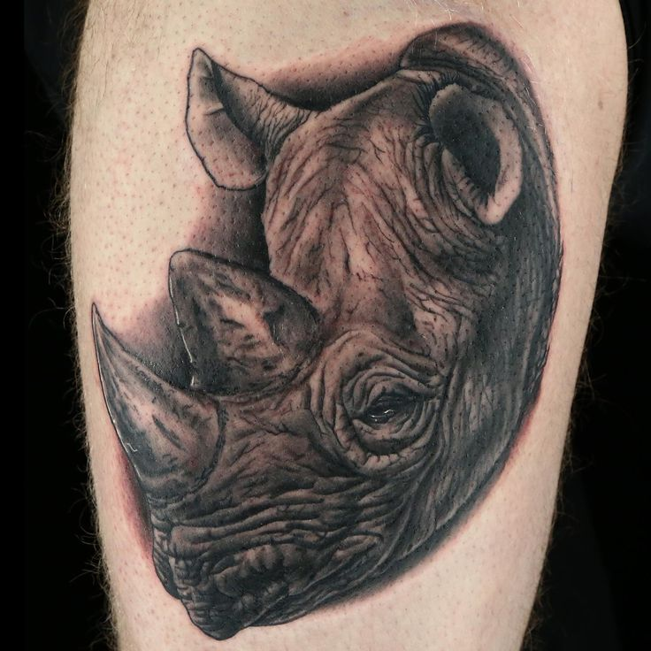Super realistic rhino tattoo by Sirvone. Ink Master on Spike tv ...
