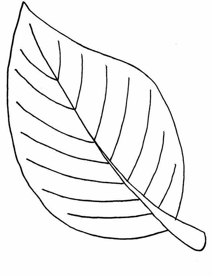 Ausmalbilder, Malvorlagen – Blätter kostenlos zum ...