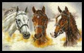 Gallery.ru / Foto # 149 - 167 - markisa81  quadro 3 cavalos 001