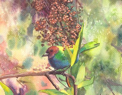 "Check out new work on my @Behance portfolio: ""Bird"" http://be.net/gallery/28901137/Bird"