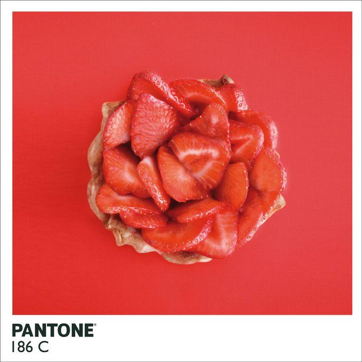 Strawberry tart-pantone-alison anselot-trendland