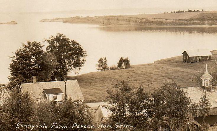 Sunnyside Farm, Pereau, Nova Scotia (no postmark, undated)
