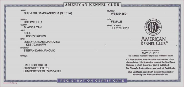 Birth Certificate Fake Template Awesome Free Peruvian