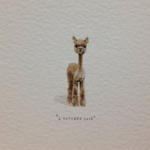 Day 278 : @markiede says I look like a shaved alpaca. 8 x 29 mm. #365paintingsforants #miniature #watercolor #shaved #alpaca (at Vredehoek)