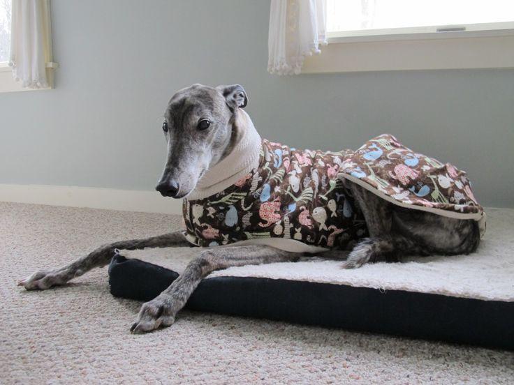 greyhound pajama pattern