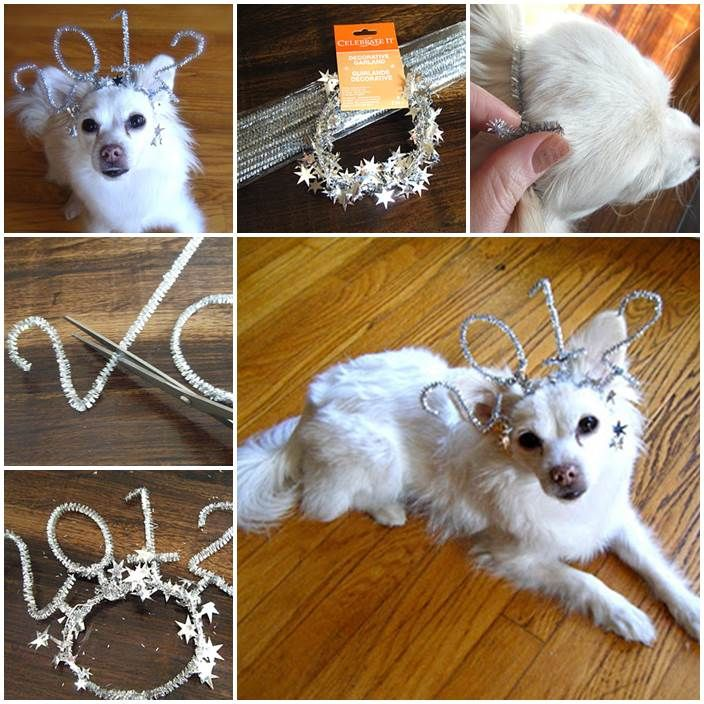 DIY Dog Happy New Year Crown - Except for the Cat!