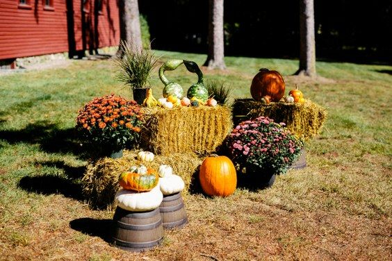 [tps_header]If you're having a fall wedding, then you're probably on the hunt for creative ways to incorporate some autumn-inspired elements into your celebration. Start from table decor: big pumpkins can ...