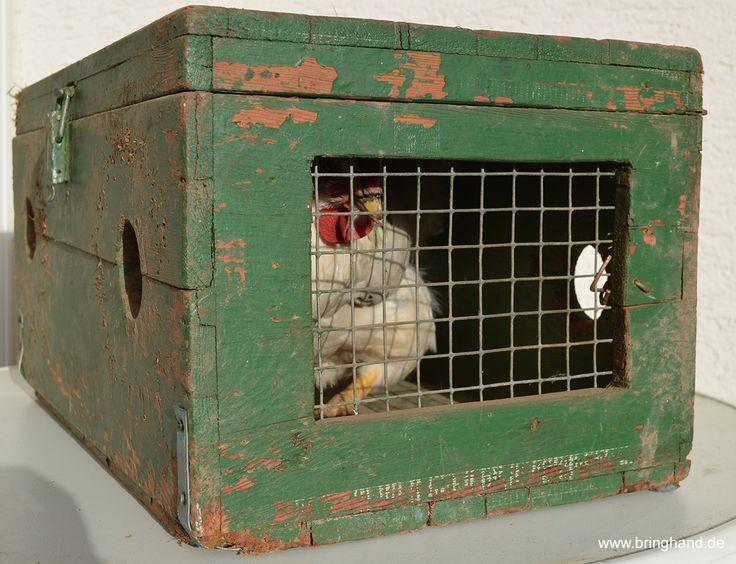 Transportkiste aus Holz für Hühner  #Hühner #Geflügel #Transport #Transportkiste #Tiertransport #Mitfahrzentrale #Tiermitfahrzentrale