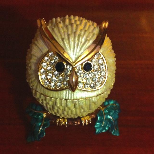 51 melhores imagens de for yu no pinterest corujas animais e como want it owl fandeluxe Choice Image