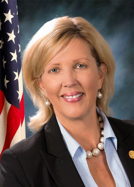 Sen. Rezin co-sponsors concussion legislation in honor of her son