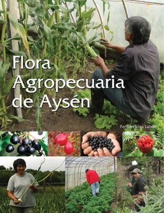 Flora Nativa de Chile - Guia de Campo, realizada por el Curso de flora nativa chilena 2012, DUOC Universidad Catolica de Chile.