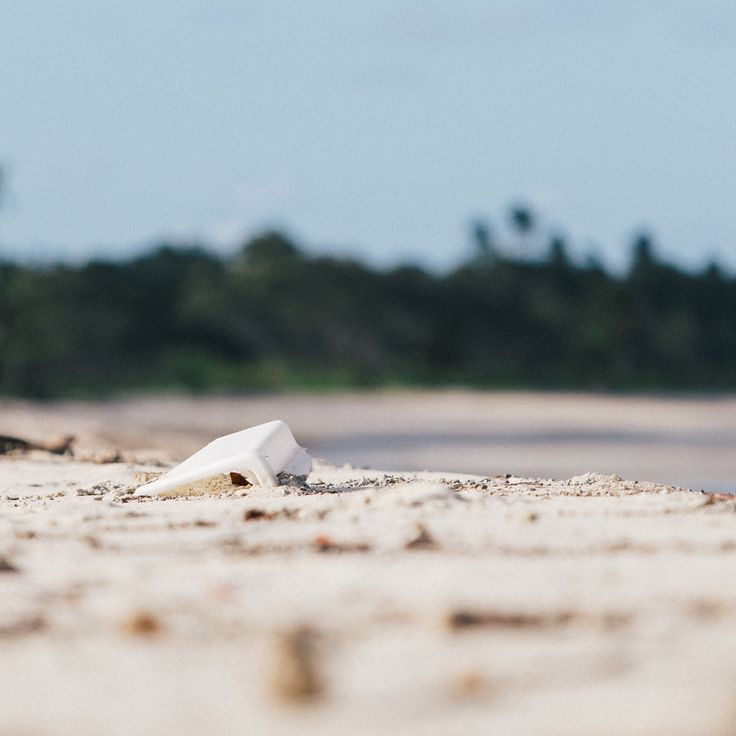 Cape York Trash Tribe #tropical #adventure