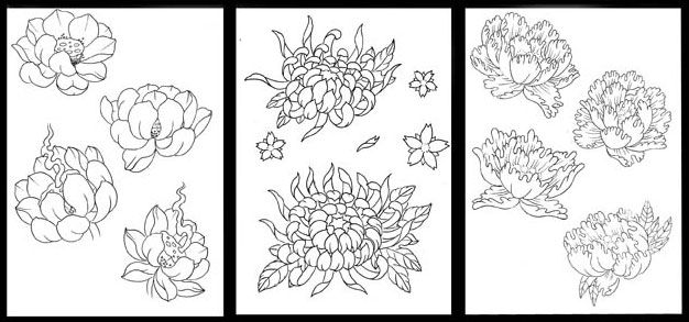 Japanese Flower Tattoos | tattoo art | Pinterest | Flower ...