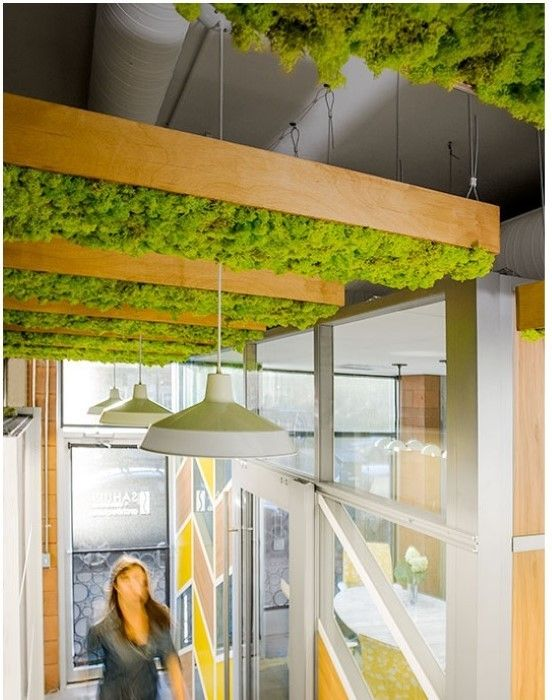 10 Ways To Decorate With Green Moss: Moss Wall, Office Interior Design, Moss Wall Art