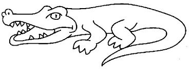Image result for crocodile drawing