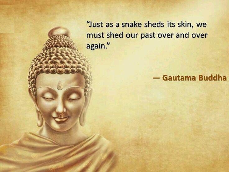 Best 25+ Enlightenment Quotes Ideas On Pinterest