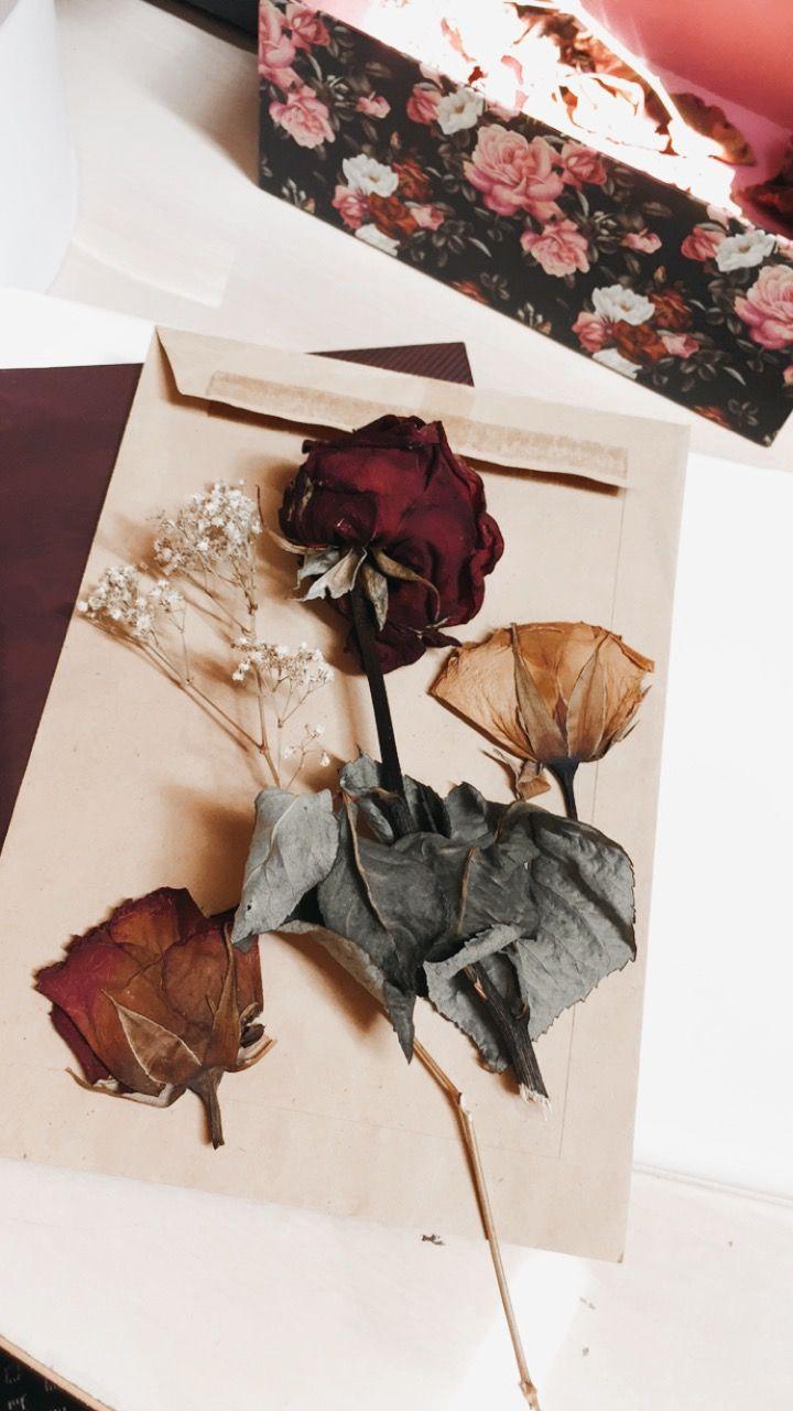 Pin Oleh Teemany Di Saمar N98 Mawar Cantik Bunga Kering Bunga