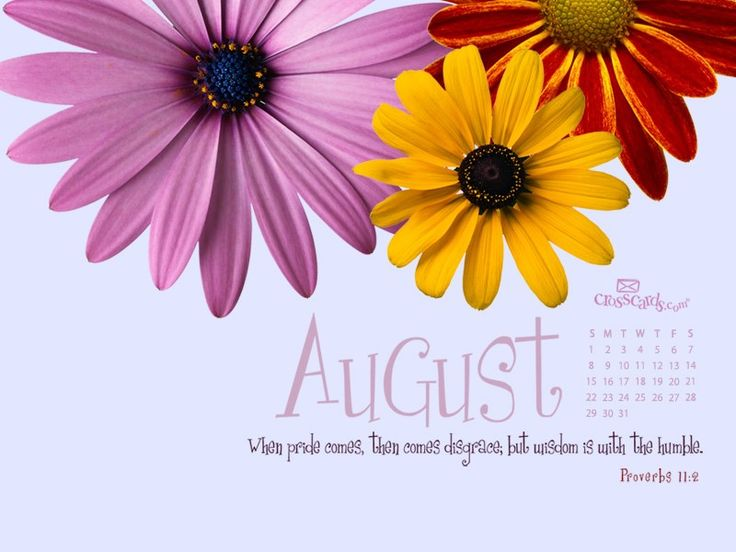 August 2010 - Proverbs 11:2