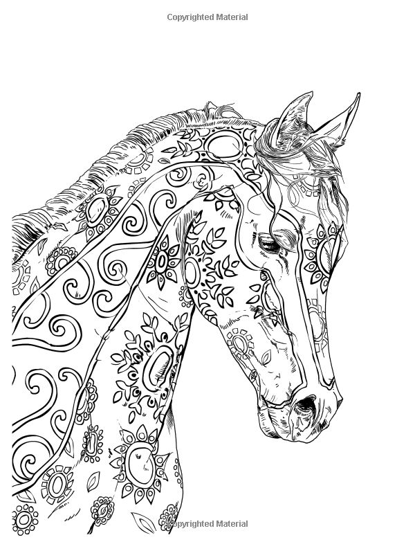 Pin By Grammy Fran On Horses Horse Coloring Pages