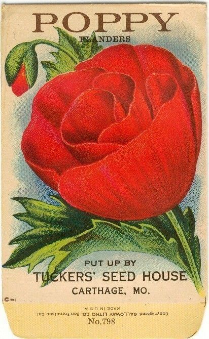 vintage seed packets, such beautiful art