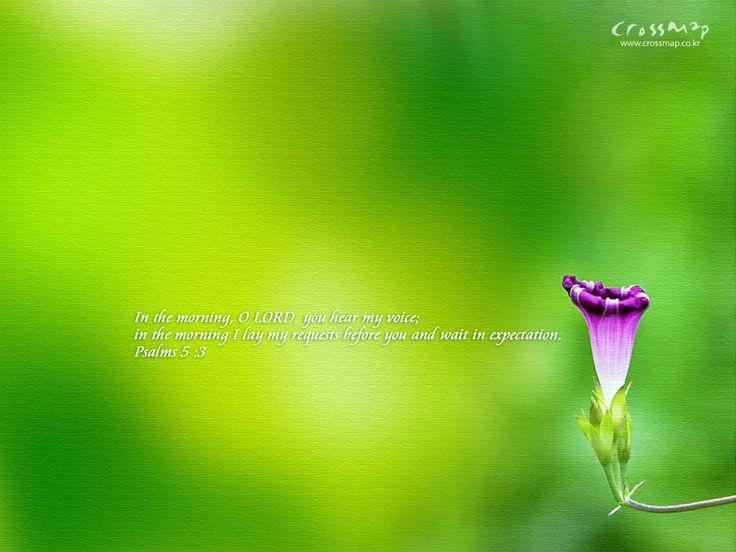 Christian-wallpaper-Bible-verses-04wallp12.jpg (1024×768)