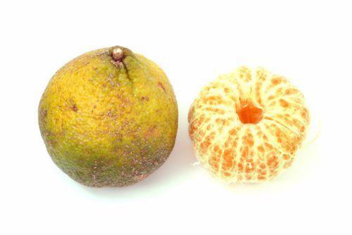 ugli-fruit
