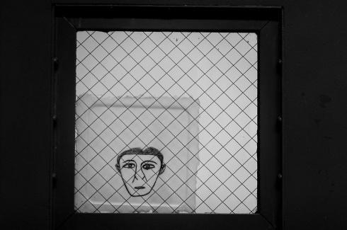 Mental Illness and Criminal Justice