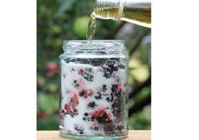 River Cottage Blackberry whisky. This looks amazing and so simple to make! Love the idea of making it in a jar