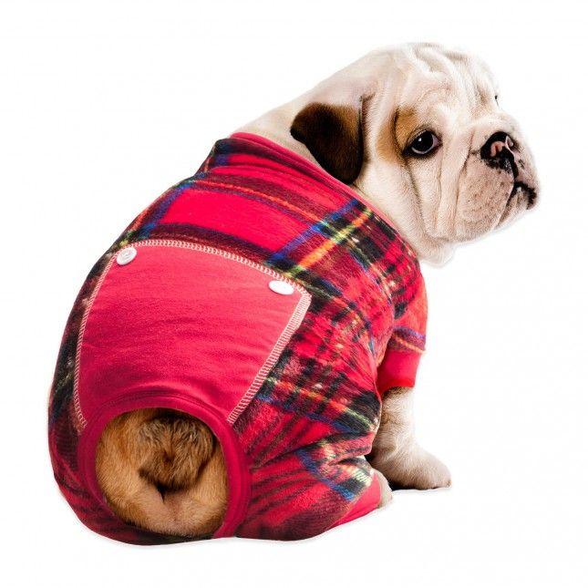 Best 25+ Dog pajamas ideas on Pinterest | Dog holidays, Holiday ...
