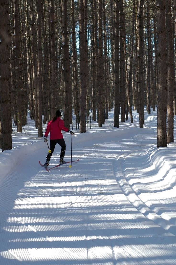 Sault Ste. Marie, Ontario. Reportedly the best cross country skiing in North America.