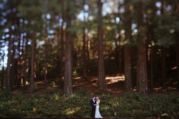 simply magical.  Emily Schuman's wedding.Outdoor Wedding, Photos Ideas, Forests Wedding, Two Years Anniversaries, Max Wanger, Wedding Photos, Cupcakes And Cashmere, Redwood Forest, Cupcakes Rosa-Choqu