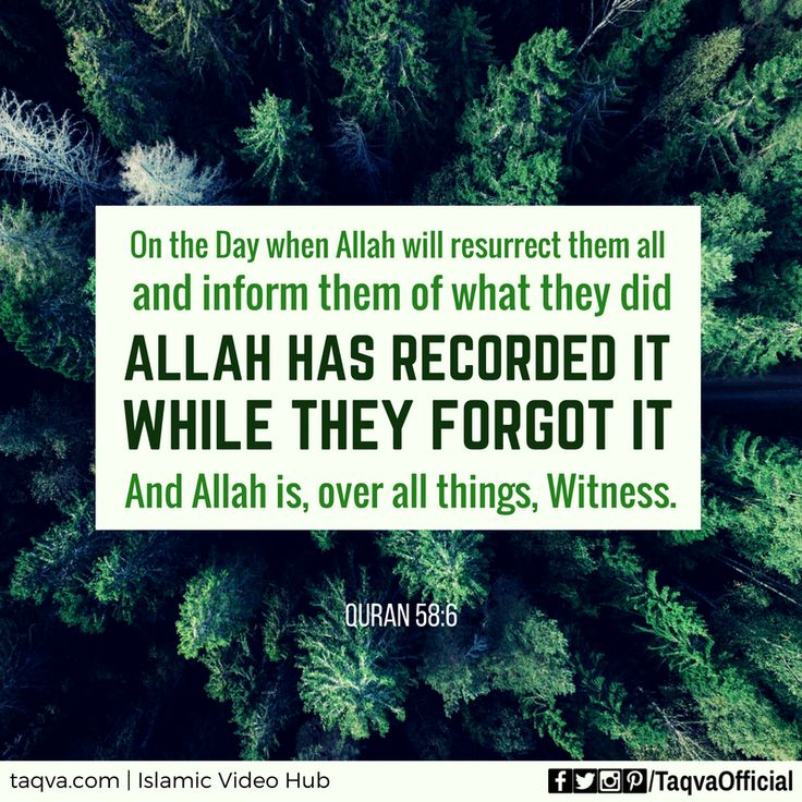 """""""On the Day when #Allah will resurrect them all and inform them of what they did; Allah has recorded it while they forgot it; and Allah is, over all things, #Witness."""" #Quran 58:6 #islam #islamic #reminder #islamicpost #JudgementDay #YaumAlQiyamah"""