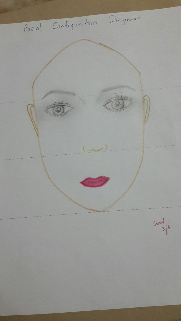 Facial configuration diagram
