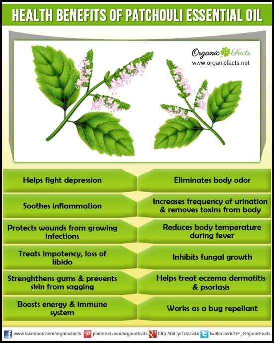 Health benefits of Patchouli Essential Oil | Organic Facts- The health benefits of patchouli essential oil can be attributed to its properties as an antidepressant, antiphlogistic, antiseptic, aphrodisiac, astringent, cicatrisant, cytophylactic, deodorant, diuretic, febrifuge, fungicide, insecticide, sedative and tonic substance.
