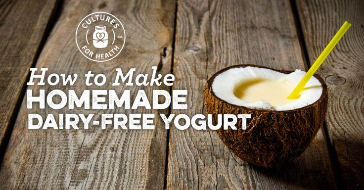 http://www.culturesforhealth.com/learn/recipe/yogurt-recipes/dairy-free-yogurt/