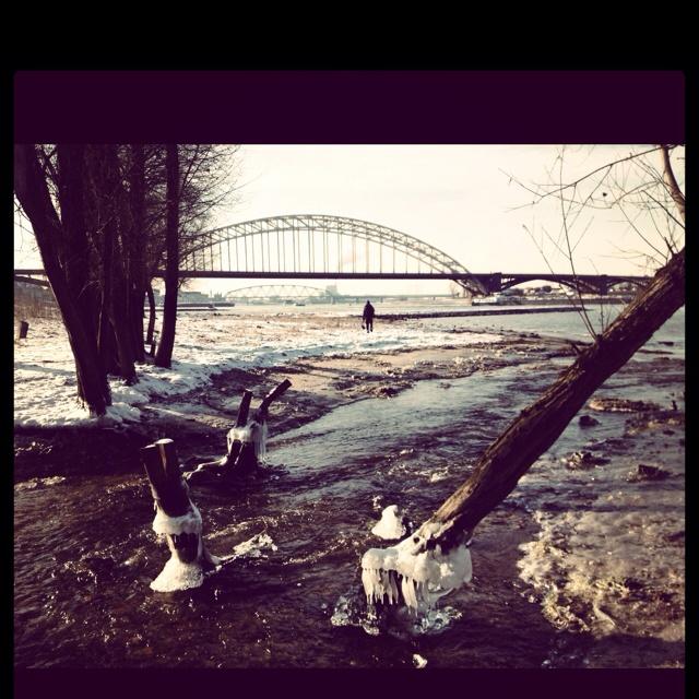 Uiterwaarden Nijmegen