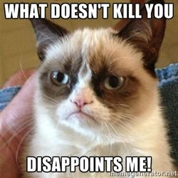 Grumpy Cat  - what doesn't kill you disappoints me!