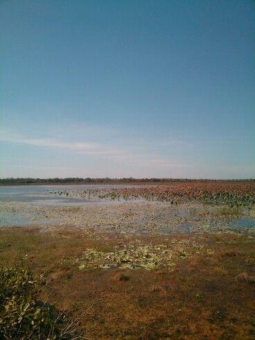 Some lake in darwin